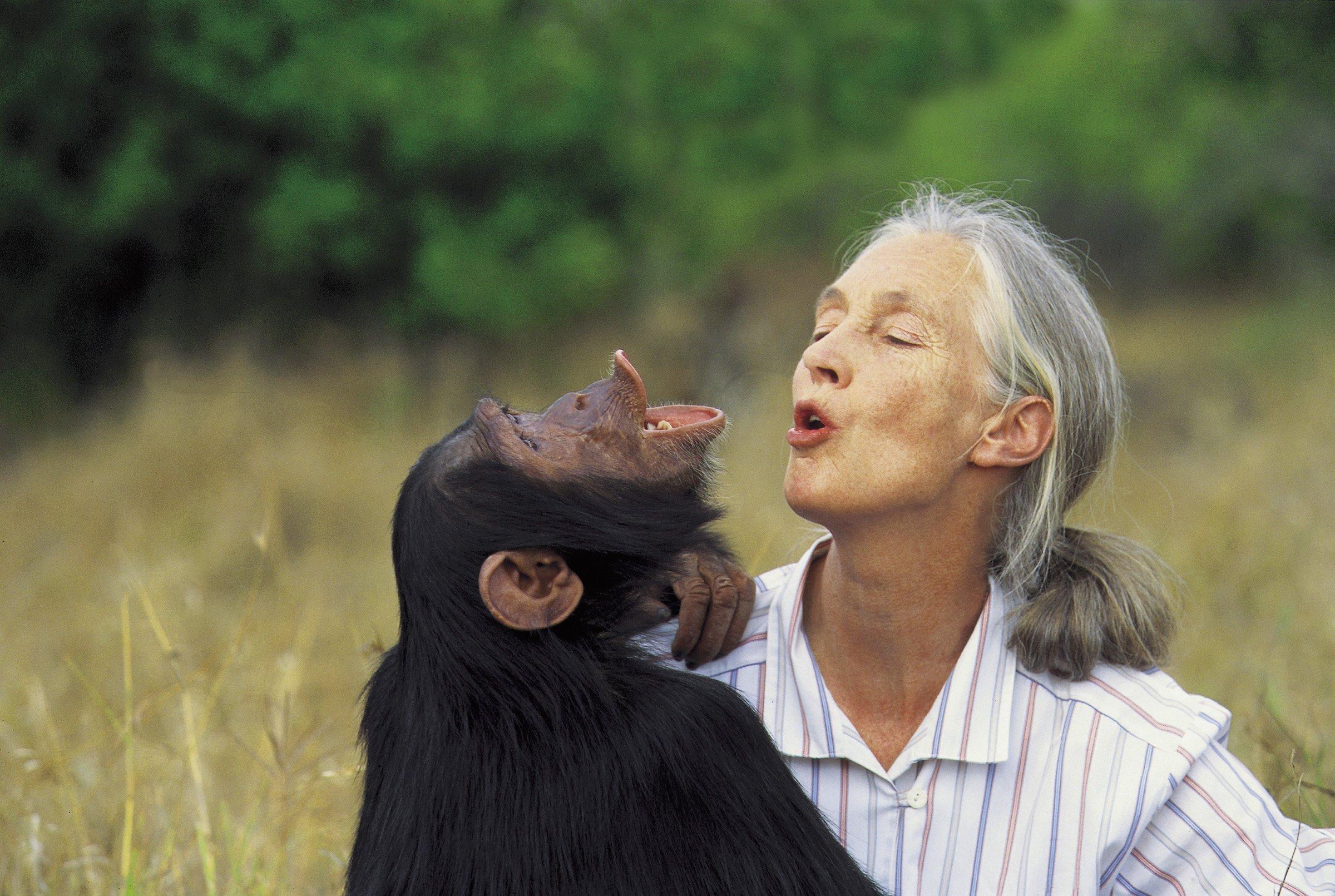 Rencontre avec Dr. Jane Goodall