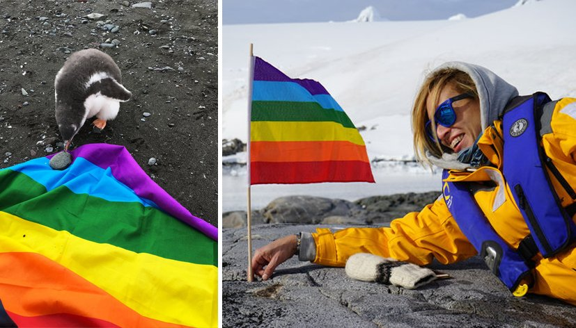 Planting Peace déclare l'Antarctique premier continent LGBT friendly