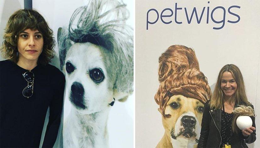 Leisha Hailey se lance dans les perruques pour chiens